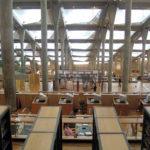 Antikens superbiliotek i Alexandria, Egypten, med en halv miljon papyrusrullar, har fascinerat mig sedan jag första gången hörde om det. Dagens Bibliotheca Alexandrina är en blek kopia av originalet tyvärr.