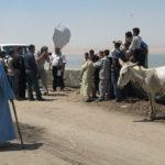 Saltsjö ungefär 70 kilometer in mot Sahara från Kairo sett. Gerhard Jörén i arbete.