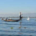 En sjö jag minns är Inle, Burmas största insjö. Fiskarna står upp när de paddlar, för att bättre kunna se vad som döljer sig i ytvattnet.