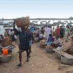 Marknadsplats för fisk strax söder om Thiruvananthapuram, nära Indiens sydspets.