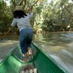 En något vådlig färd på Borneo till en bosättning dit inga landsvägar gick. Gerhard Jörén tog fotot.